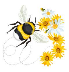bumblebee closeup head trace swirled line on vector image