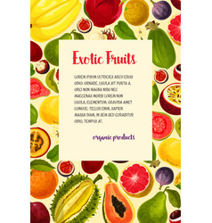 Poster of exotic fresh tropical fruits vector