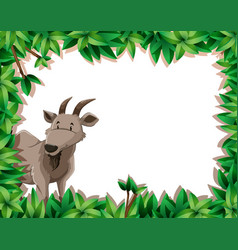 A goat on nature frame vector