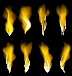 Abstract fire flames on a black background vector image