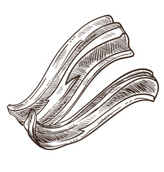 bacon slices monochrome sketch outline isolated vector image