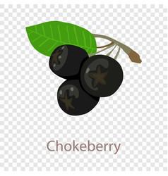 Chokeberry icon isometric 3d style vector