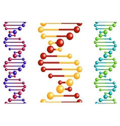 DNA molecule with elements vector image