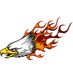 Eagle head flame template vector