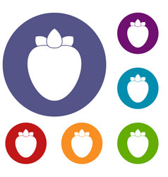 ripe persimmon icons set vector image