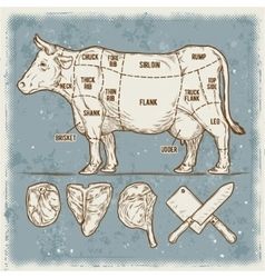 Set cuttings of beef vector