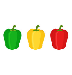 set of red yellow green sweet bell pepper flat vector image