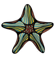 Sketch of starfish vector