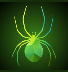spider of triangles vector image