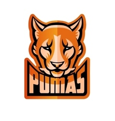 Puma Mascot vector image