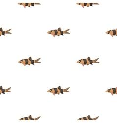 Botia clown botia macracantha fish icon cartoon vector