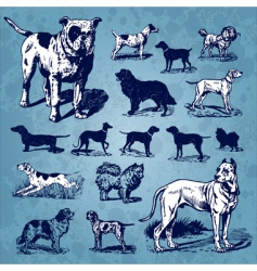 Dogs vintage set vector
