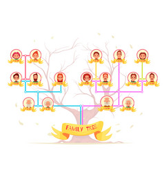 Family tree infographic avatars vector
