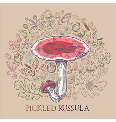 Pickled russula mushroom with leaves spices and vector