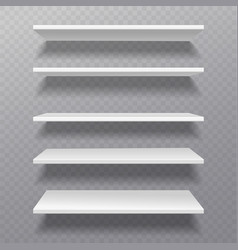 white shelves retail rack bibliotheque shelf box vector image