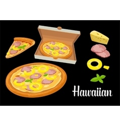 Whole pizza and slices of pizza Hawaiian in open vector