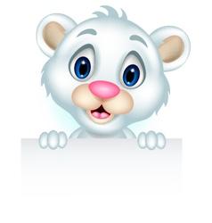 ute little polar bear holding blank sign vector image vector image