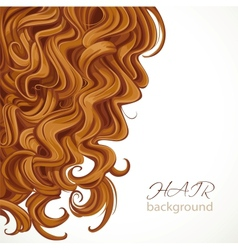 Background with curly brown hair vector image vector image
