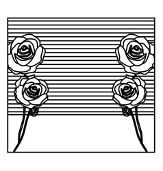 silhouette background with roses and striped lines vector image
