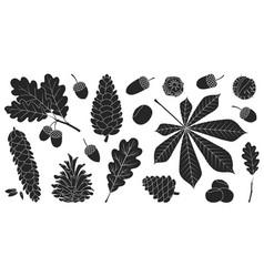 Acorn oak black set icon vector