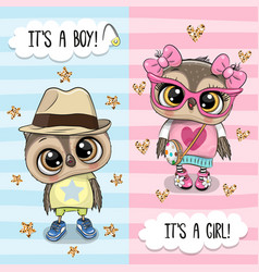Greeting card with cute owls boy and girl vector