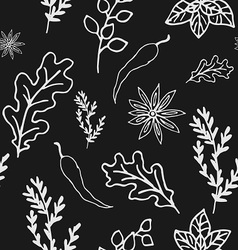 Seamless Doodle patterns herbs and spices vector image vector image