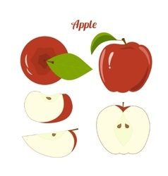 Juicy red apple and apple slices isolated vector