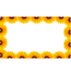a sunflower border template vector image