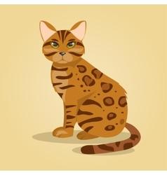 Bengal cat vector