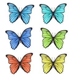 Decorative colorful hand drawn butterflies set vector image