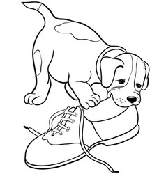Dog gnaw shoecartoon picture isolated on white vector