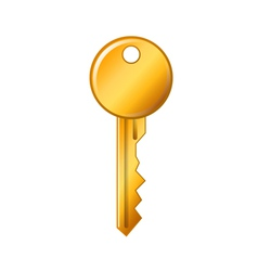 golden key on a white background vector image