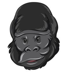 Gorilla head with happy face vector image