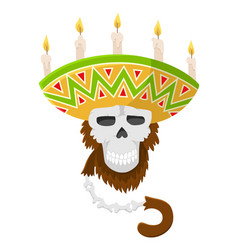 mexican skull monkey in sombrero with candles vector image