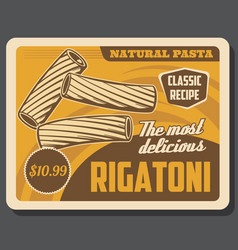 Rigatoni italian pasta raw elbow macaroni food vector