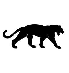 roaring black panther vector image