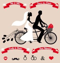 Wedding couple on tandem bicycle set vector