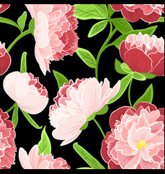 peony rose pink flowers seamless pattern on black vector image vector image