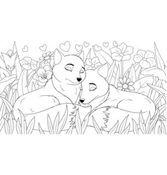 a couple wild foxes in vector image