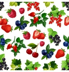 Berries fruits seamless pattern vector