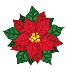 Christmas Poinsettia vector