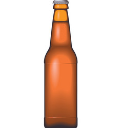Glass Beer Bottle vector image