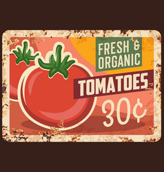 Tomatoes rusty metal plate farm price tag vector