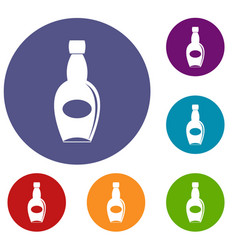 Big bottle icons set vector