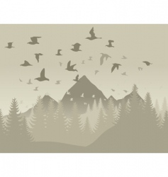 birds in mountains vector image
