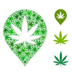 cannabis map marker mosaic of hemp leaves vector image