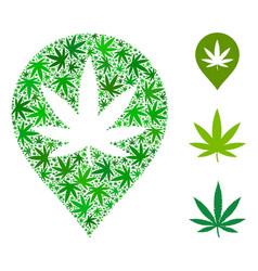 Cannabis map marker mosaic of hemp leaves vector