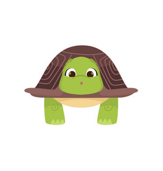 Front view standing cute green turtle isolated vector