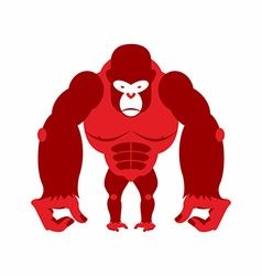 Gorilla big and scary Strong red Angry monkey vector image