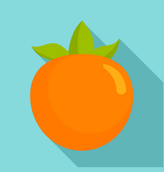 Persimmon fruit icon flat style vector